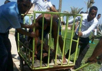 Ovo je monstrum koji je napao turiste na plaži: Nakon krvavog pira, stavili ga u kavez!