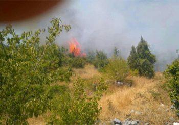 Alarmantno u Trebinju: Plamen dostiže 20 metara, prijeti selima i groblju