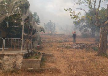 Selo Dubočani kod Trebinja u plamenu, izgorjelo nekoliko kuća