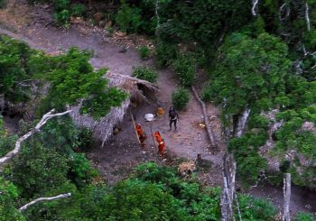 Brazilski kopači zlata masakrirali  amazonsko pleme