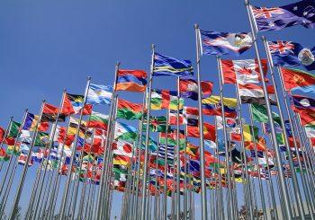 Do kraja godine ispunjavanje uslova za članstvo u STO