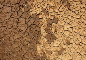 Četvrtina tla osušiće se ako Zemlja bude 2 stepena toplija
