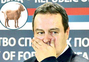 SVE ZA DRŽAVU Dačić se otrovao hranom u Burkini Faso, presjeo mu kozji gulaš