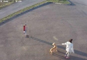 MORBIDNO: Medicinska radnica iz Kozarske Dubice pred djetetom objesila psa lutalicu VIDEO