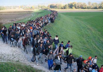 UDVOSTRUČIO SE BROJ ULAZAKA: U BiH dnevno uđe oko 50 ilegalnih migranata