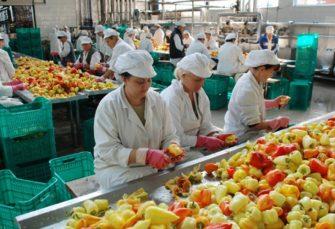 "KONKURS OTVOREN DO 25. AVGUSTA: ""Vitaminka"" traži 50 radnika"