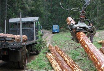 Tri osobe šumskom gazdinstvu pričinile štetu od 240.000 KM