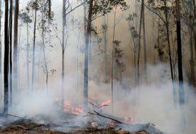 OLAKŠANJE: Australija dočekala kišu, požari jenjavaju