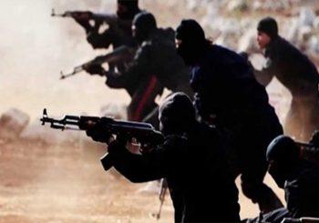 PROCJENE SLUŽBI: U Islamskoj državi ratovalo 1.200 terorista sa Balkana, od toga 350 iz BiH