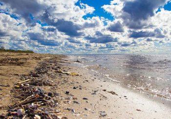 U okeanima će uskoro biti više plastike nego živih bića