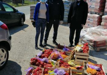 Odbornik Boran Bosančić obezbijedio sjemenske pakete za mještane Rekavica