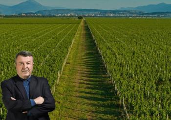 Prof. dr. Veselin Vukotić podneo ostavku na mesto predsednika Upravnog odbora Plantaža