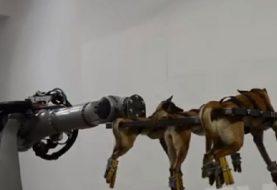 """SLUČAJ """"ILIĆ"""": Gdje je granica između umjetničkog performansa i mučenja životinja?"""